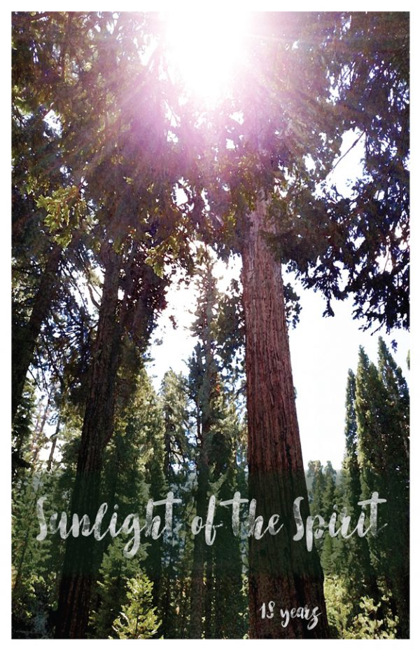 18 year card - Sunlight of the Spirit