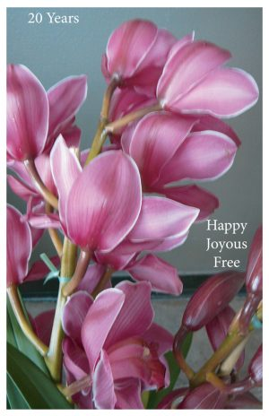 20 year card - Happy Joyous Free