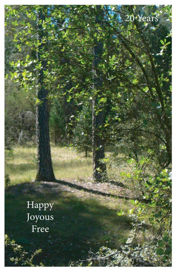 20 Year card - Happy Joyous Free