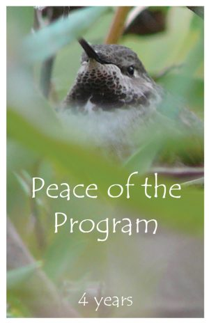4 years card - Peace of the Program
