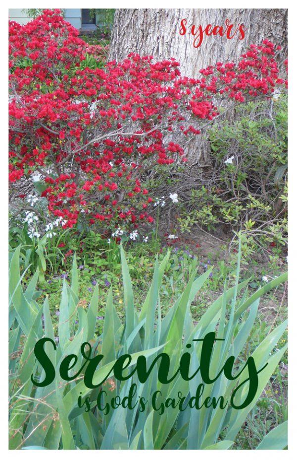 8 year card - Serenity is Gods Garden